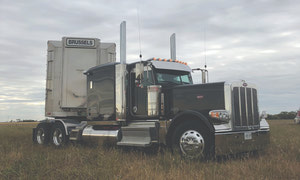 Would You Drive a Livestock Truck? By Shawn Loughlin and Lisa Boonstoppel-Pot